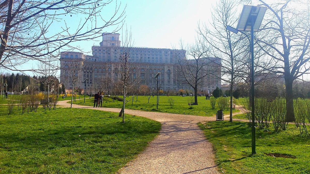 Un alt parc aflat în administrarea Primăriei Generale are probleme. Copaci uscați în Parcul Izvor. ALPAB cere abia acum replantarea lor