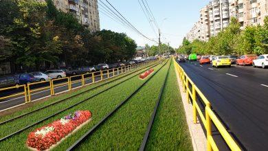 Photo of Grădini suspendate pe blocuri și linia tramvaiului 41 înierbată – Proiecte noi de spații verzi în S6