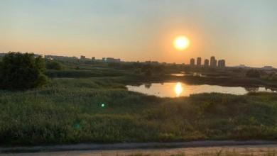 Photo of Parcul Natural Văcărești ar putea ajunge la Primăria Capitalei. Cine îl administrează acum și care sunt marile probleme