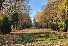 Photo of Vine, vine primăvara cu parcuri în Capitală. Un nou parc ar putea fi amenanjat în București. Unde va fi amplasat