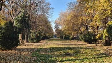 Photo of Apare un nou parc în București! Unde va fi amplasat