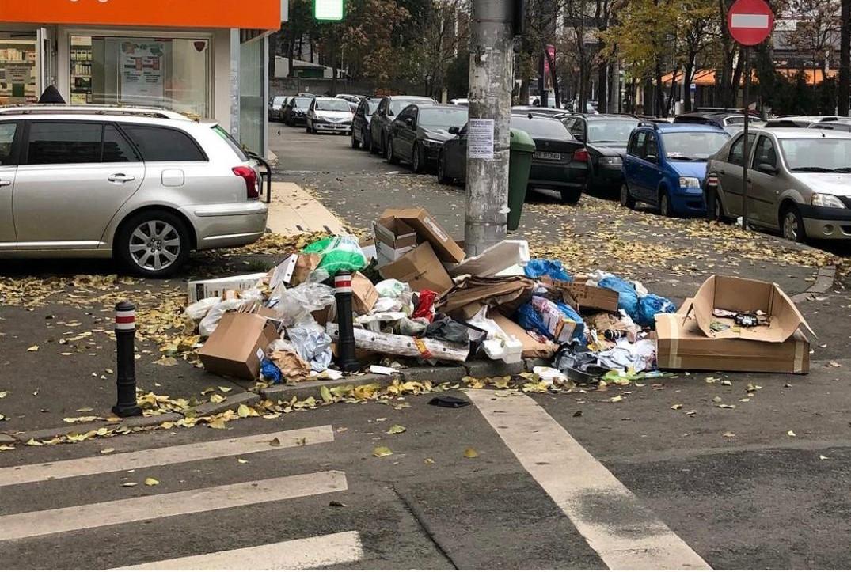 Uraaa! Clotilde Armand, veste bună pentru Sectorul 1: de astăzi se ridică gunoiul