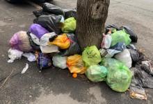 Photo of Clotilde Armand pregătește un proiect privind gunoiul: Reducerea cheltuielilor cu salubritatea stradală pe o perioadă de 6 luni