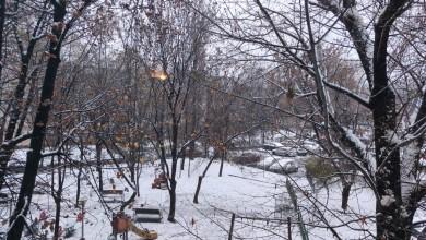 Photo of Brrr, a venit din nou iarna în București. Primăria anunță curățarea străzilor și stațiilor de tramvai