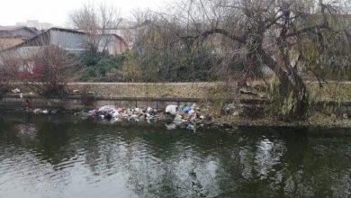 Photo of Lacul Plumbuita din Sectorul 2 al Capitalei urmează să fie curățat. Anunțul făcut de Radu Mihaiu