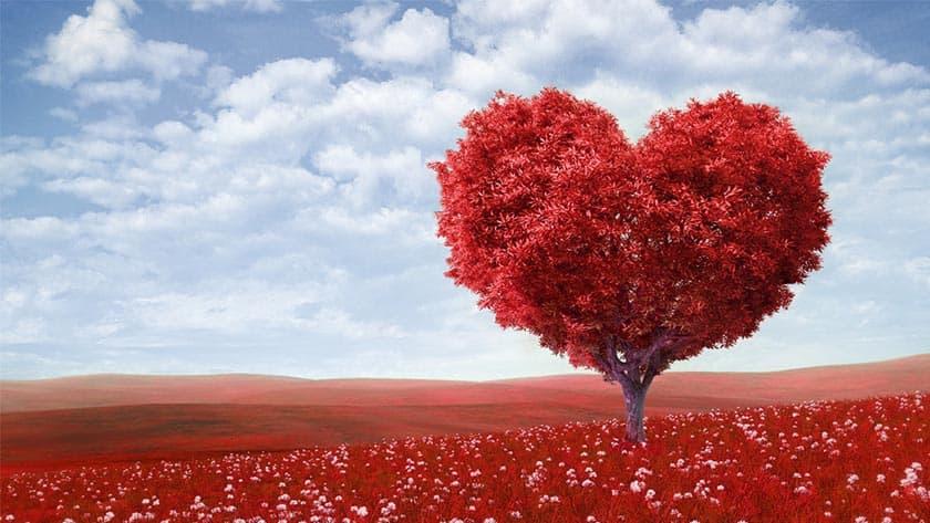 Tradiții și obiceiuri de Valentine's Day