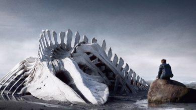 """Photo of Când în Rusia protestele sunt zdrobite, să vezi """"Leviathan"""", un film politic rusesc despre Stat – monstrul atotputernic care nu poate fi învins niciodată"""