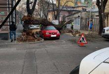 Photo of Două mașini distruse în București de un copac putrezit care a căzut grămadă peste ele