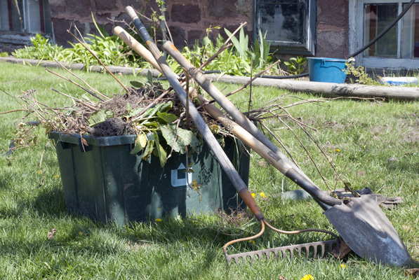 Curățenia de primăvară în Sectorul 2
