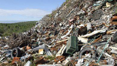 Photo of Amenzi de 26.200 lei pentru nerespectarea normelor de salubrizare şi igienizare în Sectorul 6