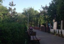 Photo of Două parcuri din București și-ar putea schimba numele. Consiliul Local Sector 2 urmează să decidă