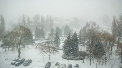 """Photo of Ninsorile de primăvară. Cât vor mai dura. Ce spune un climatolog despre vremea care """"nu se mai face bine"""" în România"""