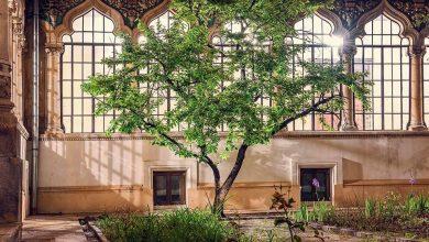 Photo of Formidabila poveste a Școlii Centrale de Fete din București.  O privire prin cele mai ascunse colțuri și prin două perechi de ochi sclipitori: Annie și Ioana Bentoiu