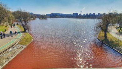 Photo of S-a aflat de ce apa lacului din parcul IOR este roșie. Cine este de vină