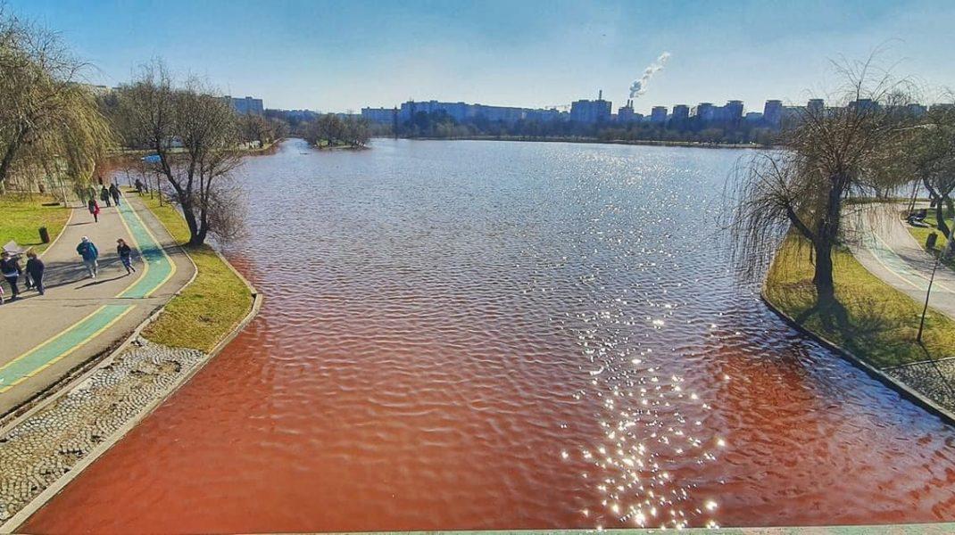 de ce apa lacului din parcul IOR este roșie