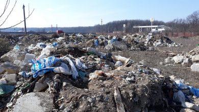 Photo of Amenzi de 300.000 de lei date de Primăria Sector 1 pentru depozitarea ilegală de deșeuri pe domeniul public