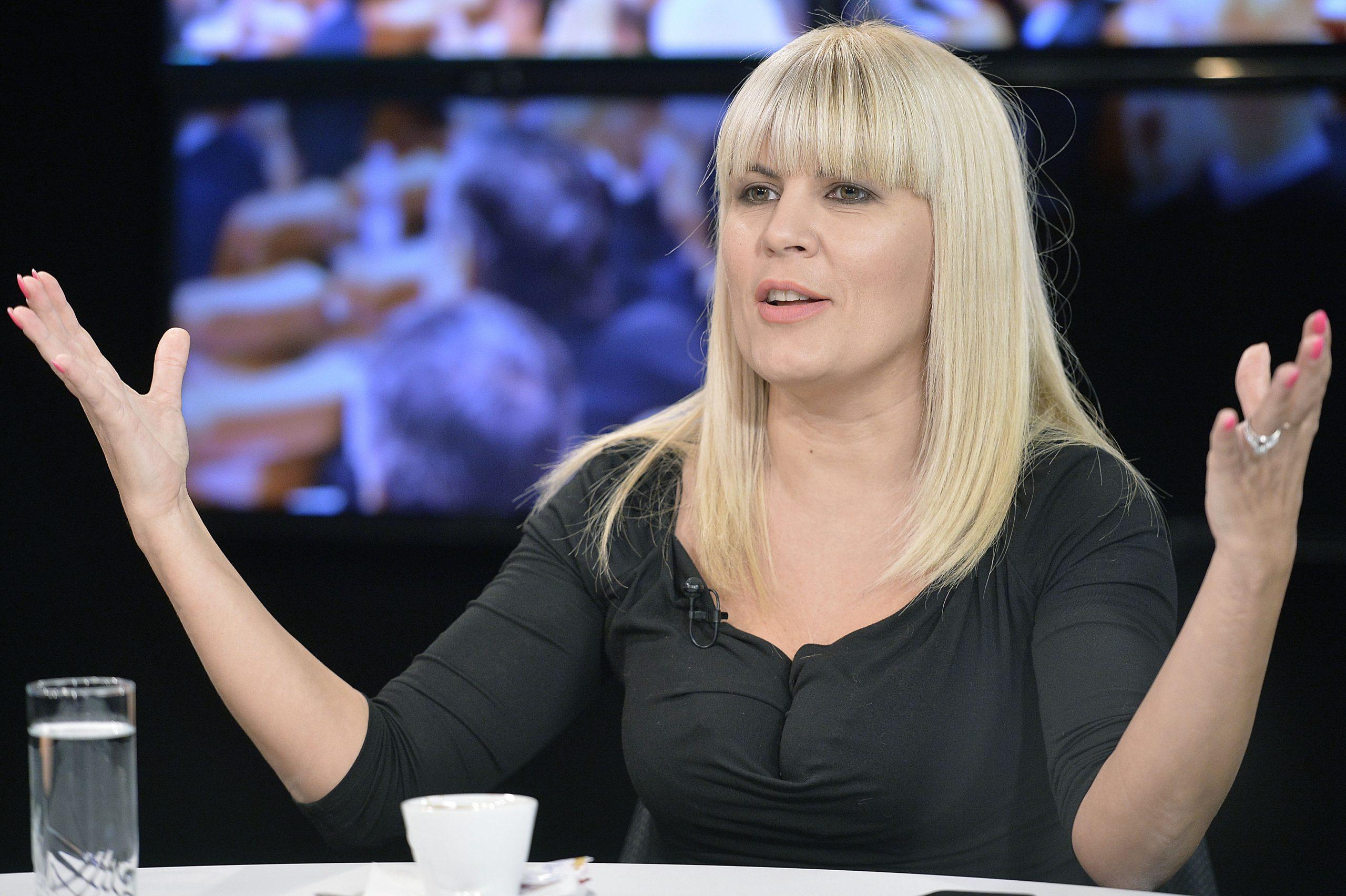 Elena Udrea are voie să plece din țară