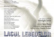 """Photo of """"Lacul Lebedelor"""", transmis online, vineri, de Opera Națională București"""