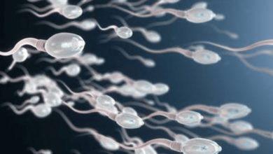 Photo of Și spermatozoizii, țuști, spre Lună! Savanții vor să bombardeze satelitul preferat cu încărcături masive de (scuze!) spermă