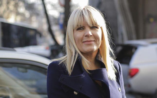 Elena Udrea despre motivarea sentinţei prin care a fost condamnată