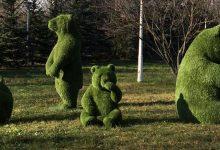 """Photo of Vedeți urșii panda din poză? Au costat """"doar"""" 100.000 de lei. Clotilde Armand a făcut anunțul"""