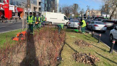Photo of Se anunță curățenie în parcurile și piețele din Sectorul 1