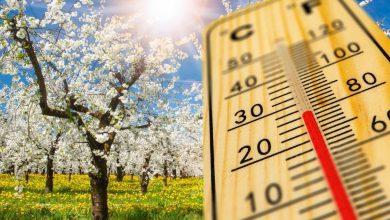 Photo of Vremea de Paște în București. Temperaturi de vară în Capitală. Atenție, însă, vor fi și ploi torențiale