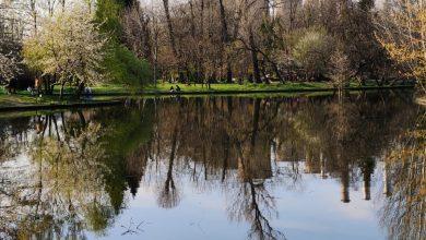 Photo of Vremea pentru următoarele două săptămâni. Temperaturile maxime din București vor fi în creștere