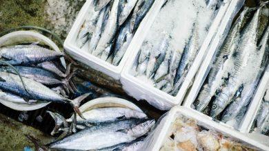 Photo of Inspectorii sanitari au dat amenzi de 117.200 de lei pentru comercianții de pește din București. Au fost retrase 150 kg de pește de la comercializare