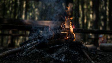 Photo of Cetățenii sunt sfătuiți să nu dea foc la deșeuri, miriști sau plante uscate. Garda de mediu spune în ce condiții pot da oamenii foc la vegetație