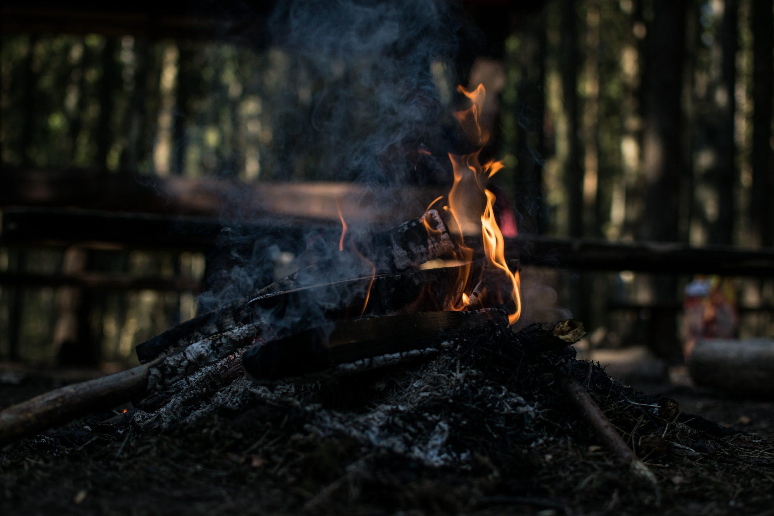 Garda de Mediu incendii vegetatie