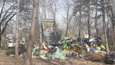 Photo of Munți de gunoaie în parcul Herăstrău. Focar de poluare în Sectorul 1
