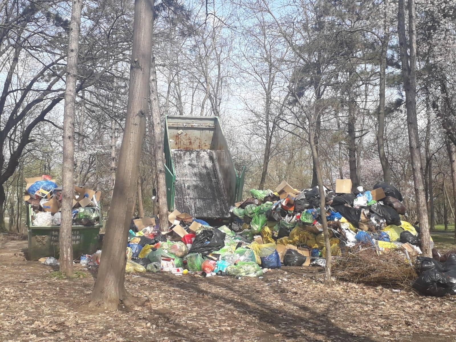 Munți de gunoaie în parcul Herăstrău