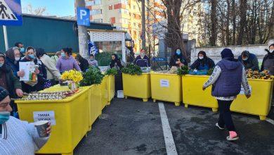 Photo of Piedone a demarat proiectul. Tarabe gratuite pentru bătrânii care vând legume sau fructe în Sectorul 5: Ne ținem de promisiune