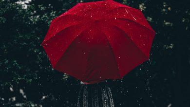 Photo of ANM a emis un cod galben de ploi pentru Capitală. Până la ce ora este valabil