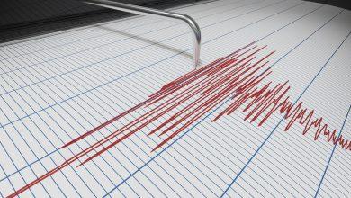Photo of Cutremur în zona seismică Vrancea. Ce magnitudine a avut și cât de aproape a fost de București