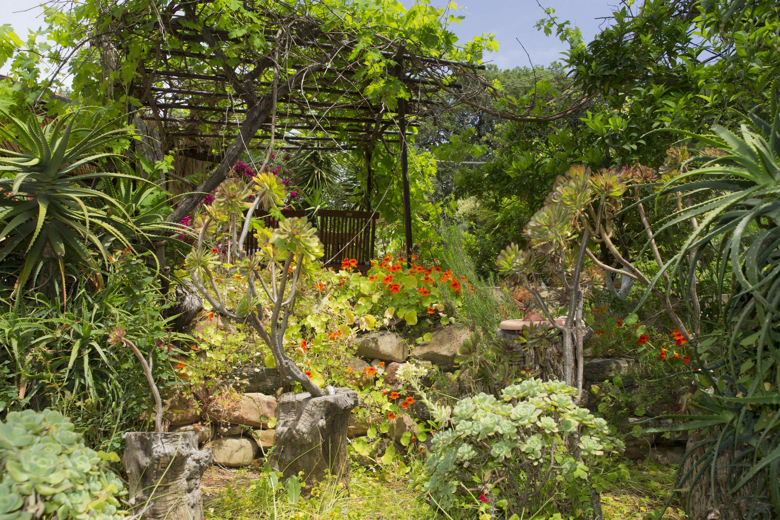 Grădina Hotelului Elia, Creta, Grecia