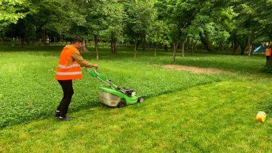Photo of Continuă înfrumusețarea parcurilor din Sectorul 1. Ce spații verzi vor fi îngrijite astăzi