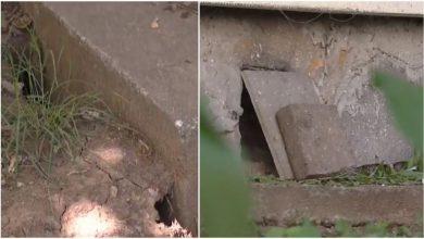 Photo of Invazie de șobolani în București. Rozătoarele au săpat galerii până la etajul 4 al unui bloc și Primăria chițăie la deratizare