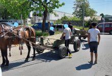 Photo of Poliția Locală Sector 3 a confiscat mai multe căruțe care treceau prin București