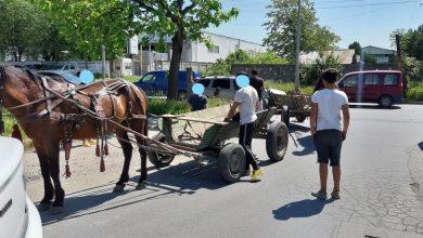 Poliția Locală Sector 3 a confiscat mai multe căruțe care treceau prin București