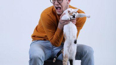 Photo of Când tragi de coadă pisica lui Schrödinger și te prinzi că miracolul vieții stă în relațiile dintre noi