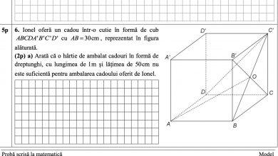 Photo of Subiecte Matematică Evaluarea Națională 2021. Ce au avut de rezolvat elevii