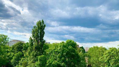 Photo of Prognoza meteo. Temperaturile se apropie de normalul acestei perioade, dar ploile încă nu dispar