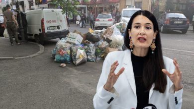 Photo of Criza gunoiului din Sectorul 1: Clotilde Armand reacționează la soluțiile propuse de Ilie Bolojan, fostul primar al Oradei