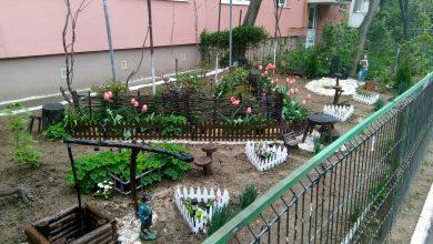 Photo of Începe revitalizarea spațiilor verzi dintre blocuri. Se dau vouchere de 1.000 de lei și se decontează bani pentru udat