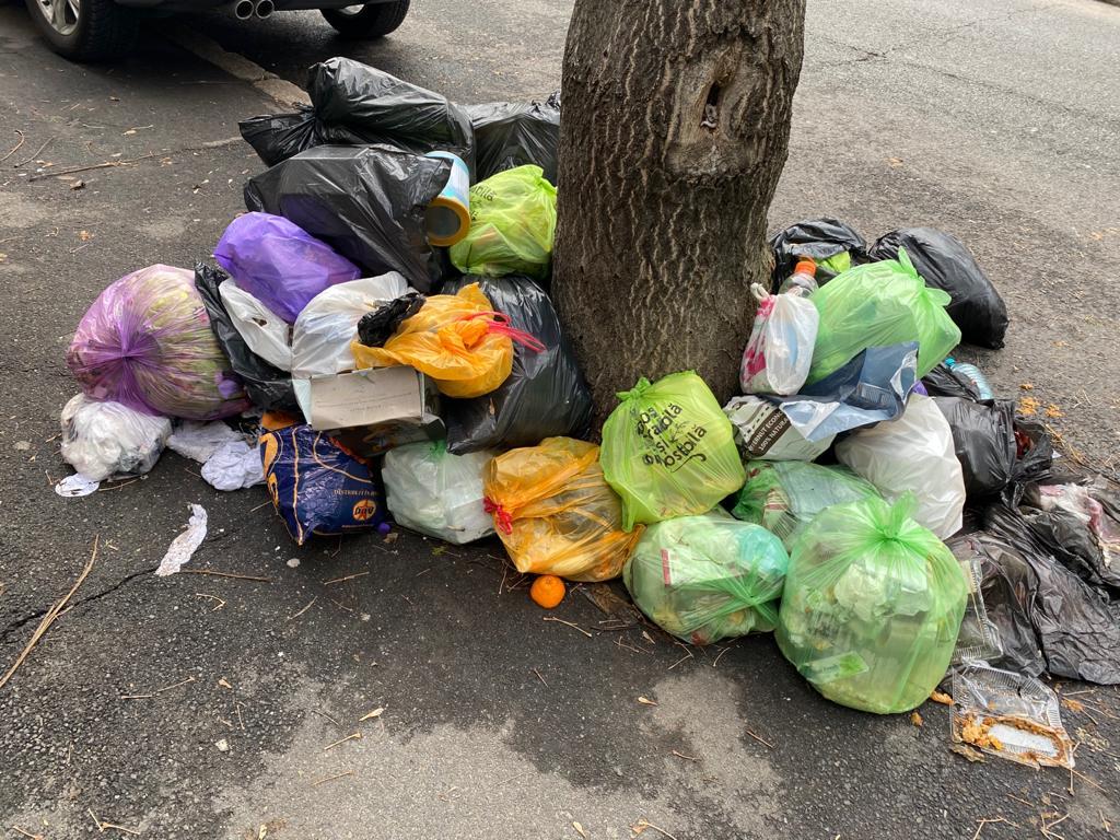 """Tanczos Barna, despre criza gunoiului din Sectorul 1: """"Nicio autoritate nu-și poate permite să pună în pericol sănătatea oamenilor"""""""