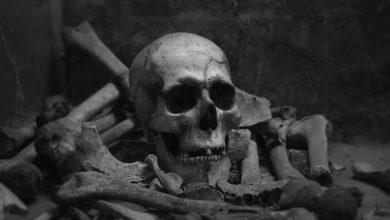 Photo of Rămășițe umane au fost găsite de muncitori în Sectorul 3 al Capitalei