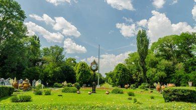"""Photo of Primarul Sectorului 2 face acuzaţii grave: """"Parcul Verdi, un tun tras de băieţii deştepţi"""""""