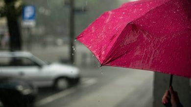 Photo of Vremea pentru următoarele două săptămâni. Ploile nu ne dau pace